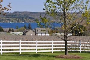View of White Birch Vineyards and Skaneateles Lake