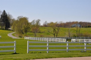 View of Horse Pastures and Meadows